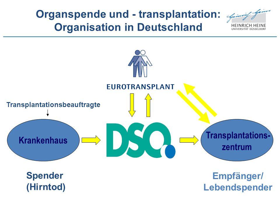 Organspende und - transplantation: Organisation in Deutschland Krankenhaus Transplantations- zentrum Spender (Hirntod) Empfänger/ Lebendspender Transp