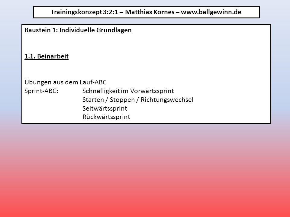 Baustein 1: Individuelle Grundlagen 1.1.