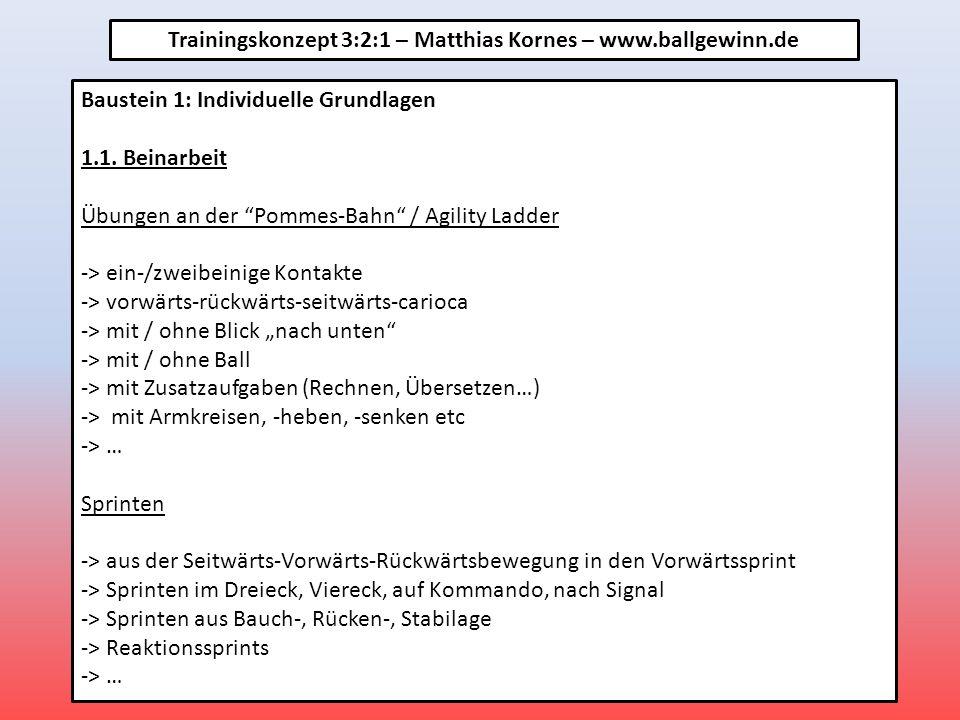 FSG Sulzbach / Leidersbach – Trainingskonzept 3:2:1 Baustein 1: Individuelle Grundlagen 1.2.