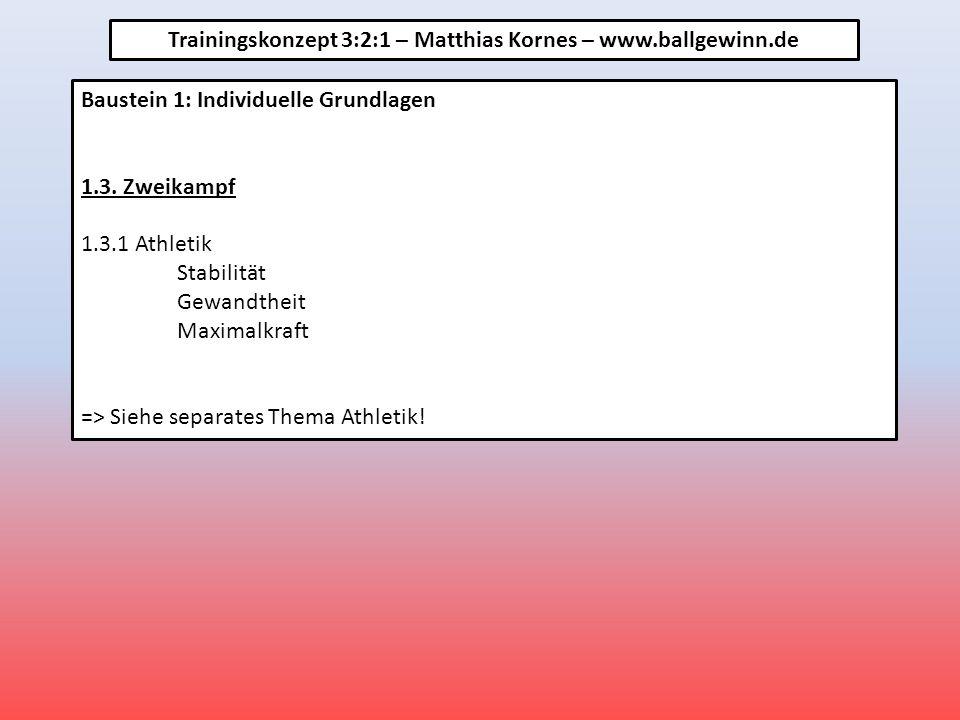Baustein 1: Individuelle Grundlagen 1.3.