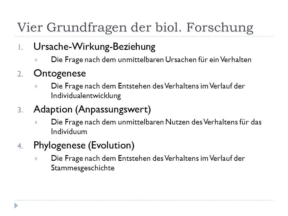 Vier Grundfragen der biol. Forschung 1. Ursache-Wirkung-Beziehung Die Frage nach dem unmittelbaren Ursachen für ein Verhalten 2. Ontogenese Die Frage