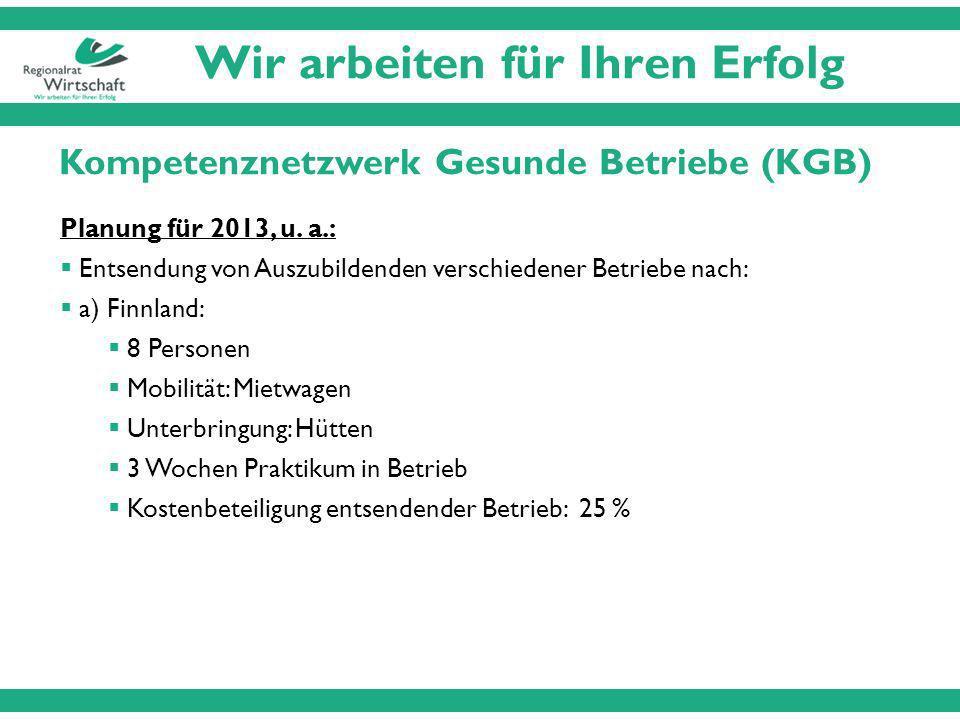 Kompetenznetzwerk Gesunde Betriebe (KGB) Planung für 2013, u.