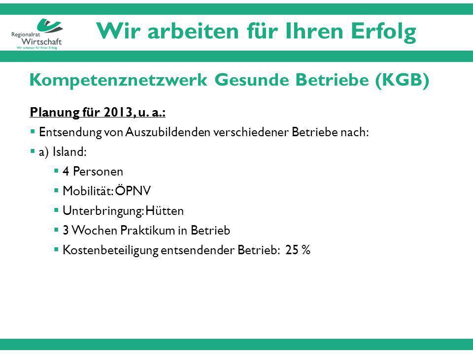 Wir arbeiten für Ihren Erfolg Kompetenznetzwerk Gesunde Betriebe (KGB) Planung für 2013, u.