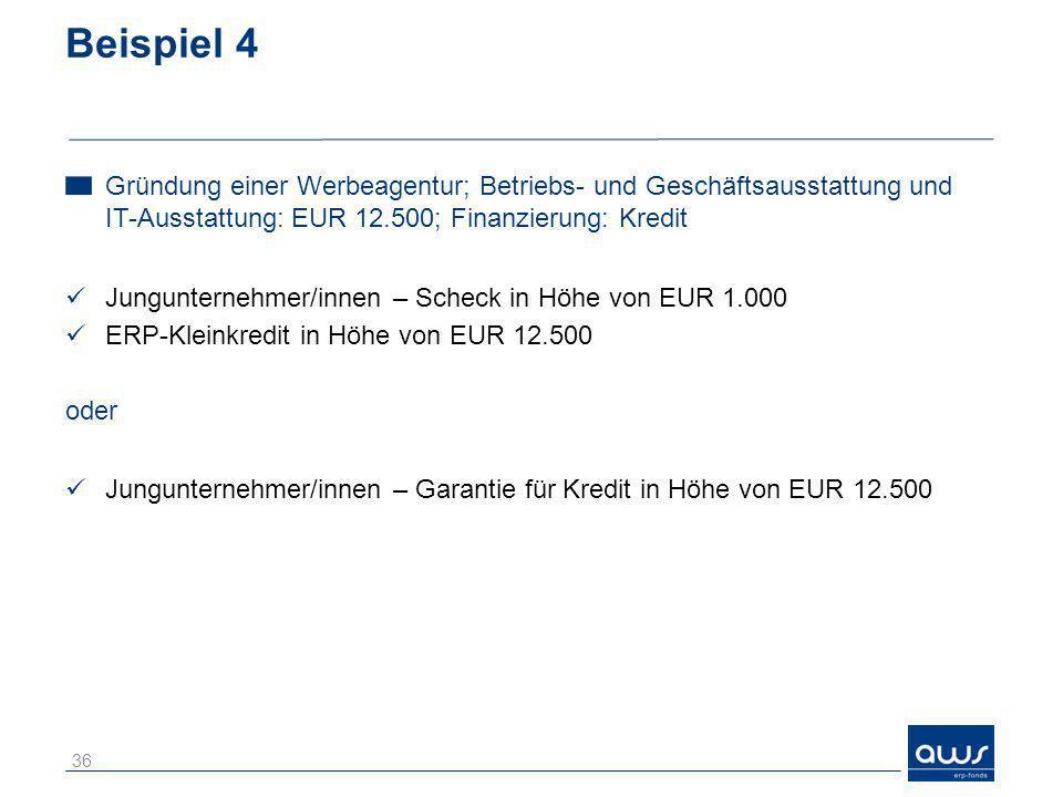 Beispiel 4 Gründung einer Werbeagentur; Betriebs- und Geschäftsausstattung und IT-Ausstattung: EUR 12.500; Finanzierung: Kredit Jungunternehmer/innen