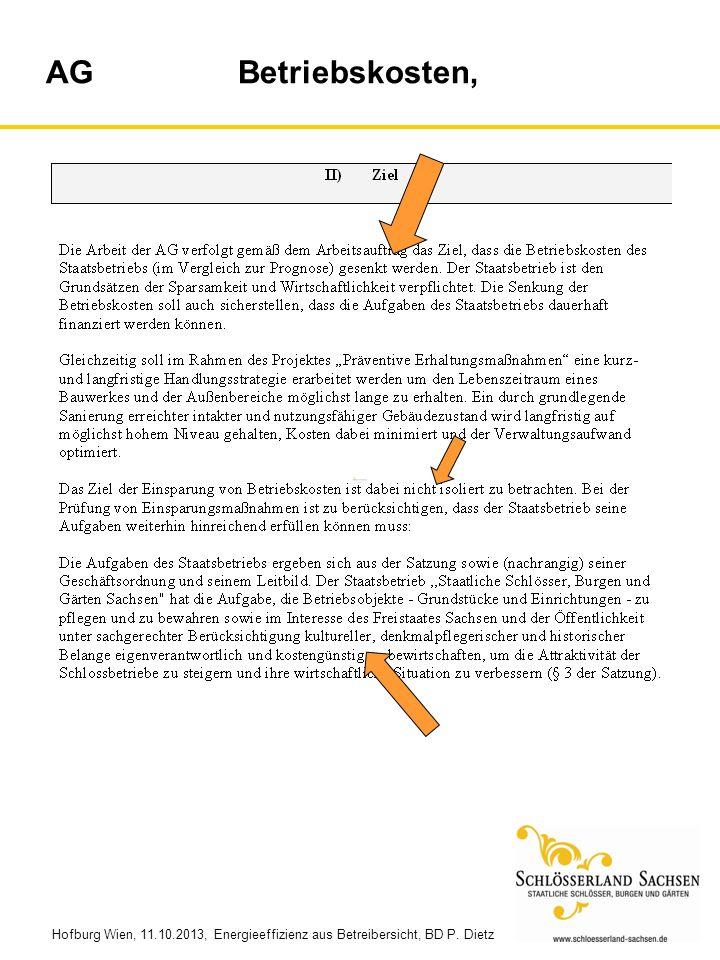 Hofburg Wien, 11.10.2013, Energieeffizienz aus Betreibersicht, BD P. Dietz AG Betriebskosten,