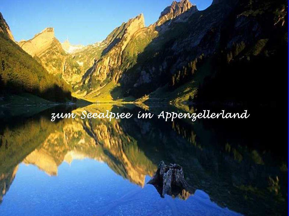 ins Appenzellerland zum Alpaufzug