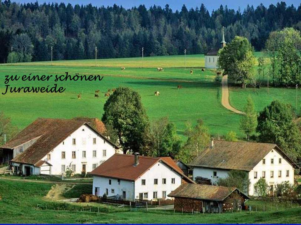 nach Thalkirchen im Bündnerland
