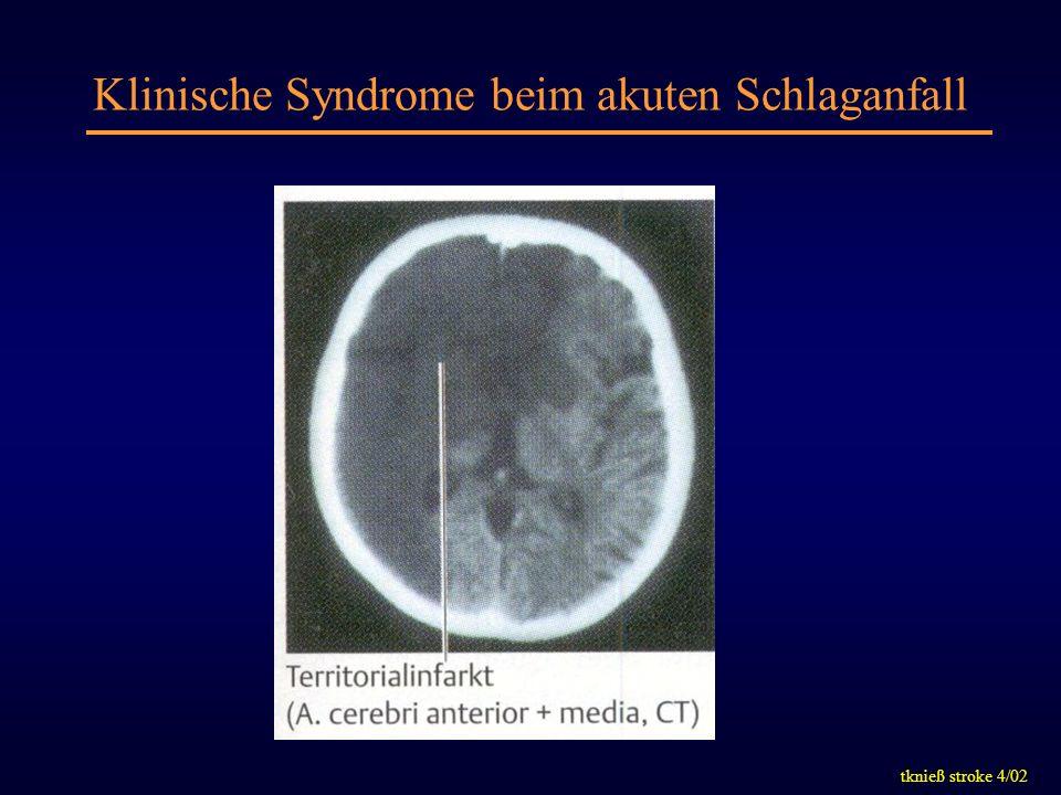 tknieß stroke 4/02 Klinische Syndrome beim akuten Schlaganfall