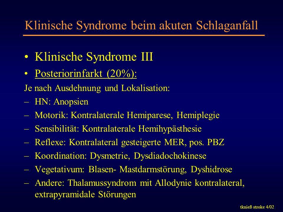 tknieß stroke 4/02 Klinische Syndrome beim akuten Schlaganfall Klinische Syndrome III Posteriorinfarkt (20%): Je nach Ausdehnung und Lokalisation: –HN