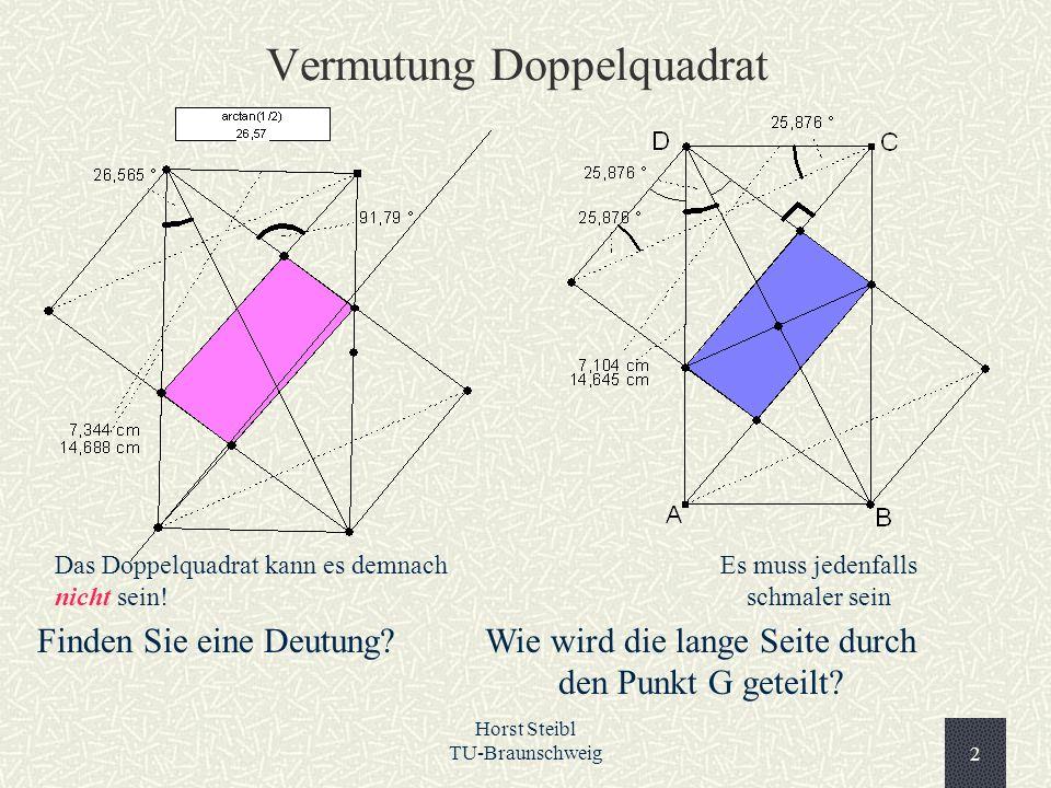 Horst Steibl TU-Braunschweig2 Vermutung Doppelquadrat Das Doppelquadrat kann es demnach nicht sein! Es muss jedenfalls schmaler sein Finden Sie eine D
