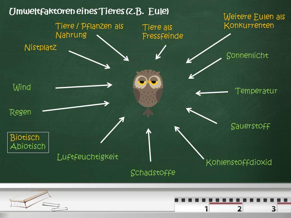 Umweltfaktoren: Biotische und Abiotische Faktoren Biotische Faktoren: Faktoren der lebenden Umwelt ( Bäume, Tiere ) die auf ein Lebewesen einwirken. A
