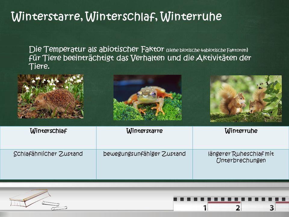 Wechselwarme und Gleichwarme Tiere Wechselwarme Tiere können ihre Körpertemperatur nicht regulieren, die Körpertemperatur entspricht etwa dem Klima. D