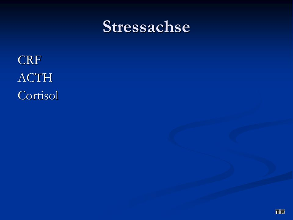 Stressachse CRFACTHCortisol