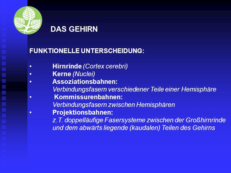 Vielen Dank für ihre Aufmerksamkeit. Fachhochschule Fulda University of Applied Science