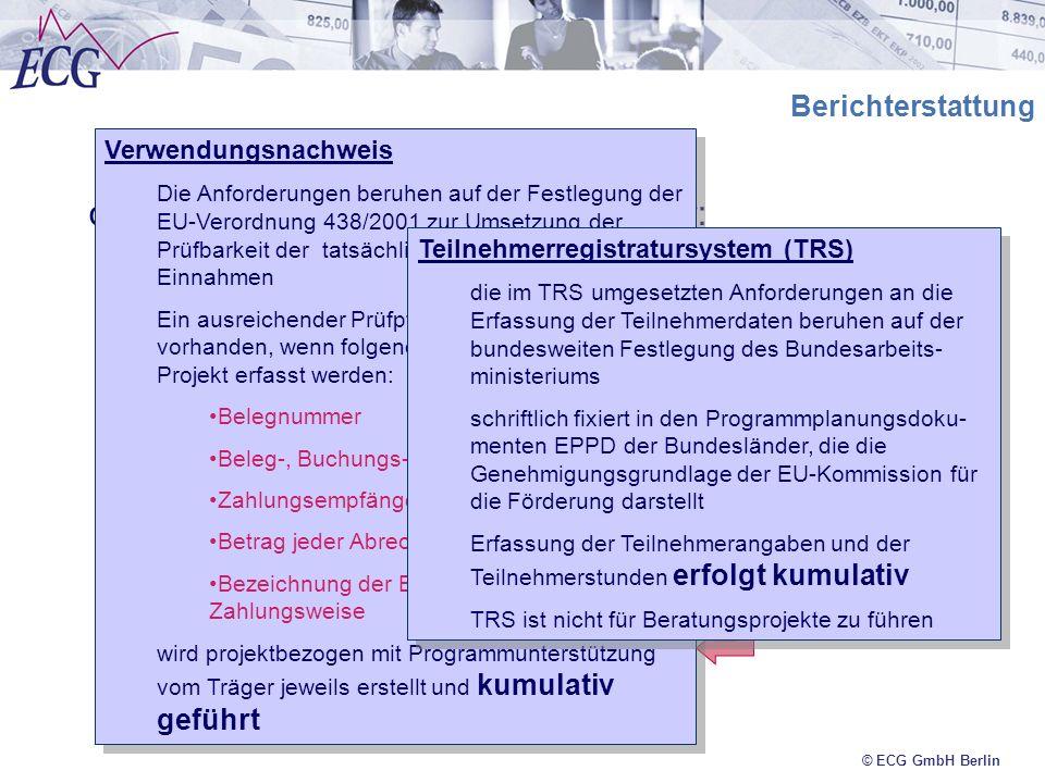 © ECG GmbH Berlin Berichterstattung die Berichterstattung gibt Auskunft über: Verwendung der bewilligten Fördermittel (Einnahmen und Ausgaben) Verwend