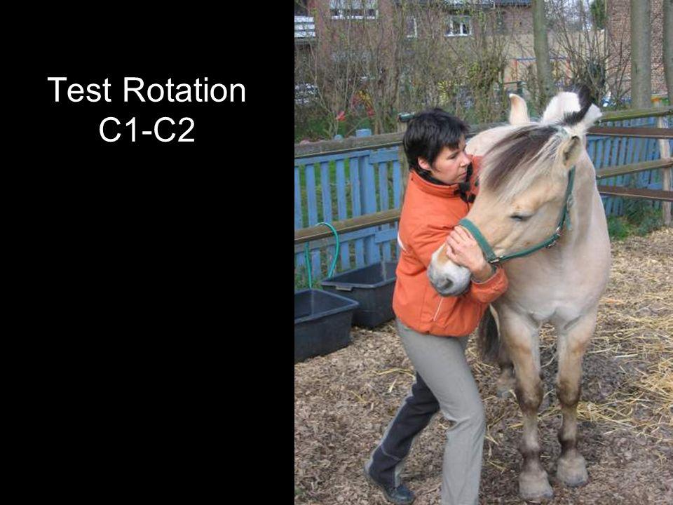 Test Rotation C1-C2