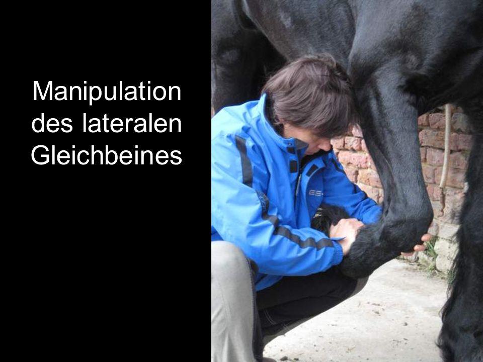 Manipulation des lateralen Gleichbeines