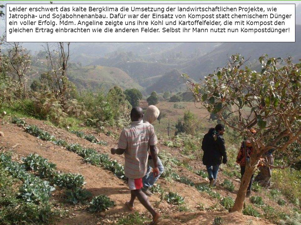 www.green-step.org GREEN STEP e.V.