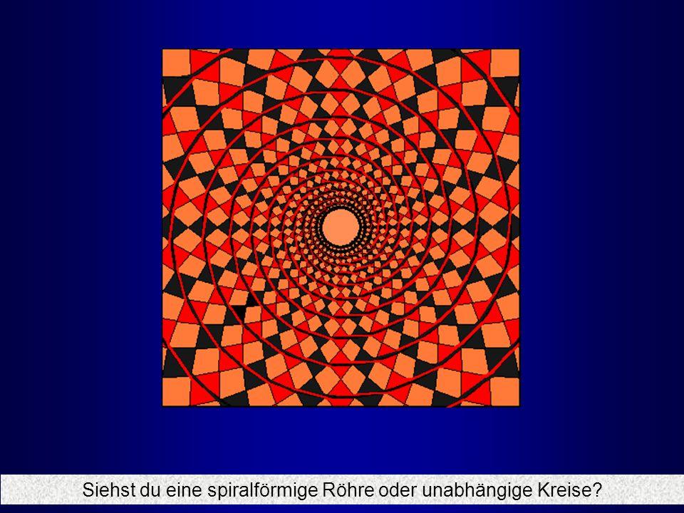 Siehst du eine spiralförmige Röhre oder unabhängige Kreise?