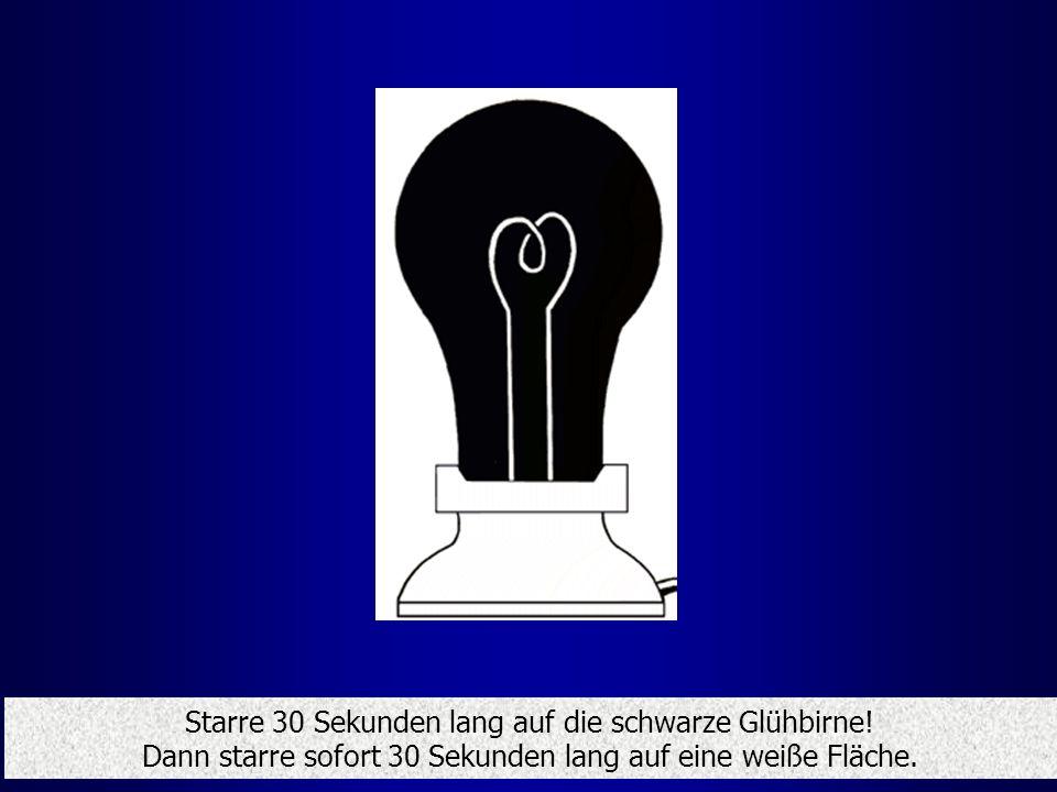 Starre 30 Sekunden lang auf die schwarze Glühbirne! Dann starre sofort 30 Sekunden lang auf eine weiße Fläche.