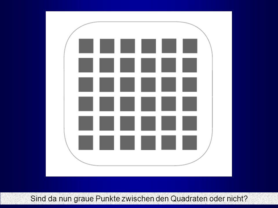 Sind da nun graue Punkte zwischen den Quadraten oder nicht?
