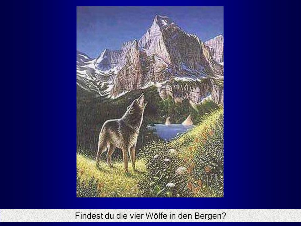 Findest du die vier Wölfe in den Bergen?