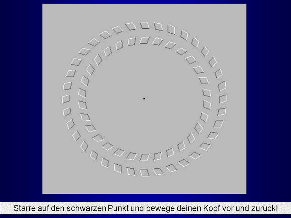 Eine Spirale – oder doch nicht?