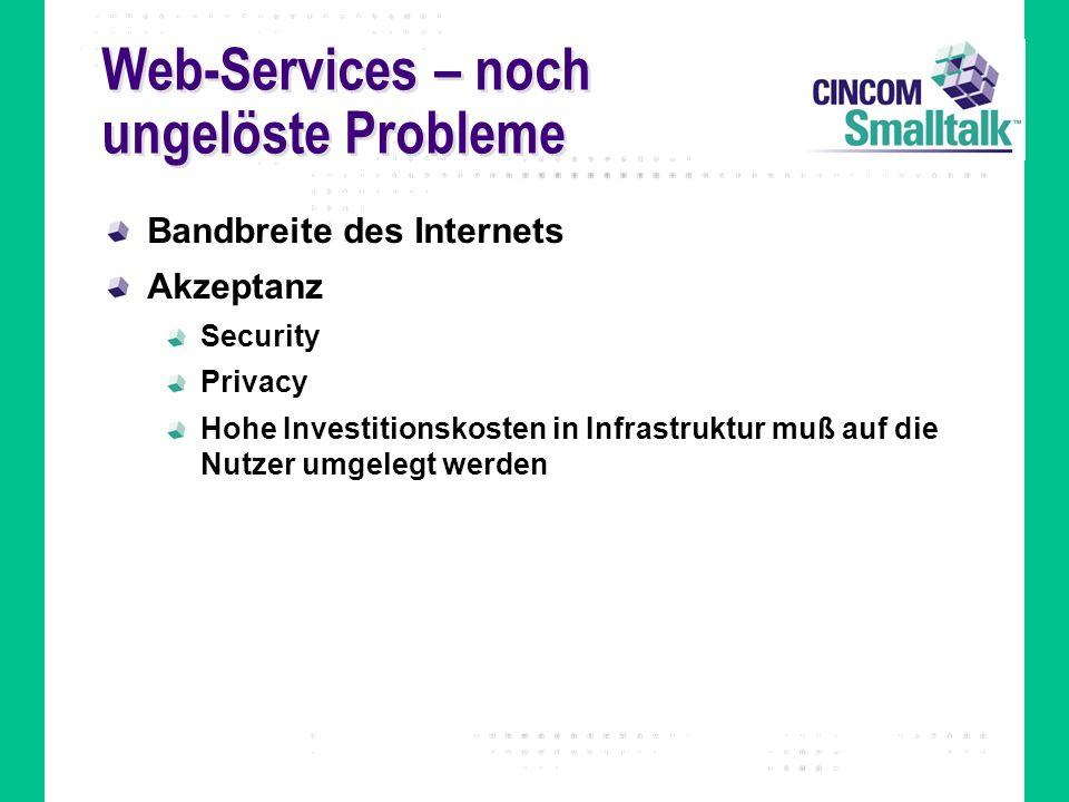 Web-Services – noch ungelöste Probleme Bandbreite des Internets Akzeptanz Security Privacy Hohe Investitionskosten in Infrastruktur muß auf die Nutzer