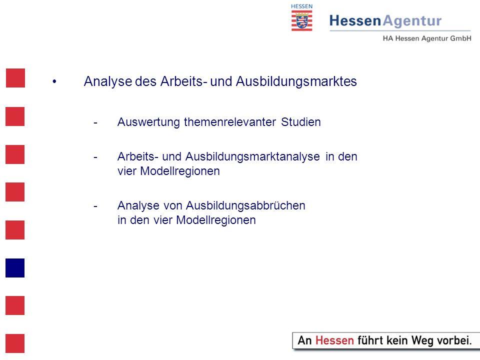 Analyse des Arbeits- und Ausbildungsmarktes -Auswertung themenrelevanter Studien -Arbeits- und Ausbildungsmarktanalyse in den vier Modellregionen -Analyse von Ausbildungsabbrüchen in den vier Modellregionen