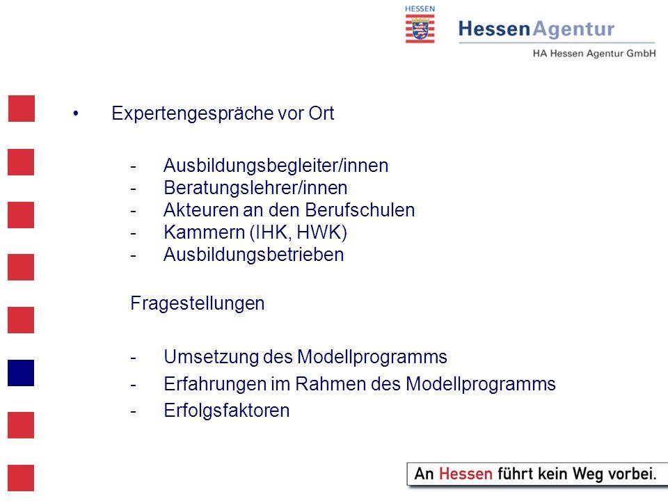 Expertengespräche vor Ort -Ausbildungsbegleiter/innen -Beratungslehrer/innen -Akteuren an den Berufschulen -Kammern (IHK, HWK) -Ausbildungsbetrieben Fragestellungen -Umsetzung des Modellprogramms -Erfahrungen im Rahmen des Modellprogramms -Erfolgsfaktoren