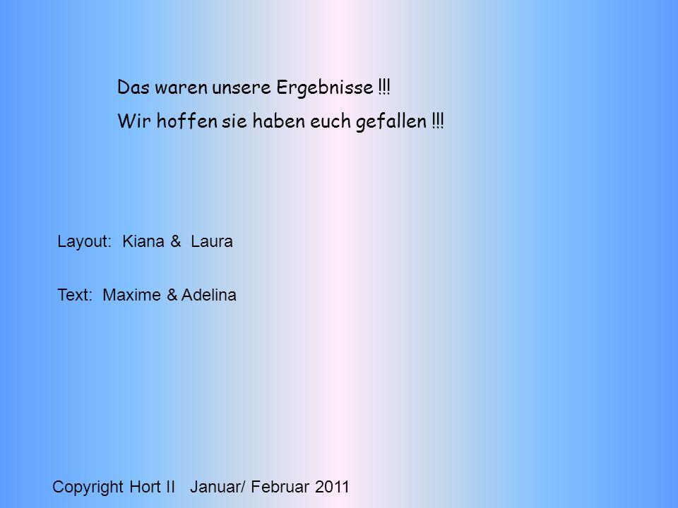 Das waren unsere Ergebnisse !!! Wir hoffen sie haben euch gefallen !!! Copyright Hort II Januar/ Februar 2011 Layout: Kiana & Laura Text: Maxime & Ade