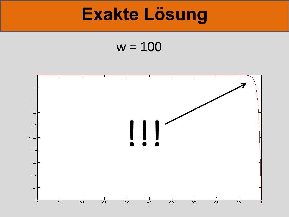 Exakte Lösung w = 100 !!!