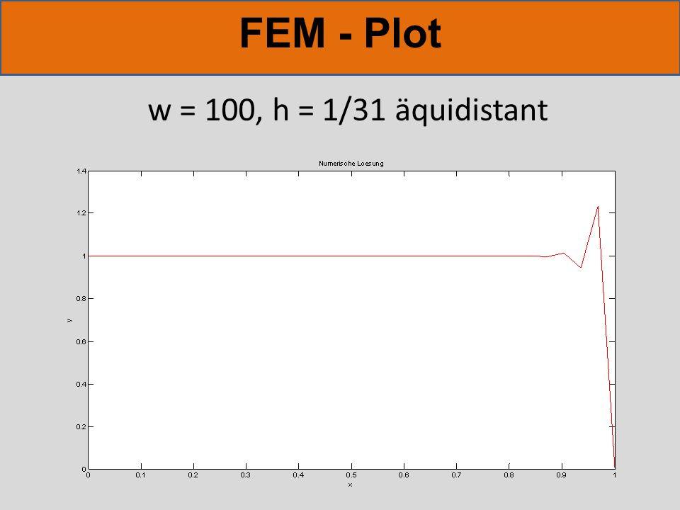 FEM - Plot w = 100, h = 1/31 äquidistant