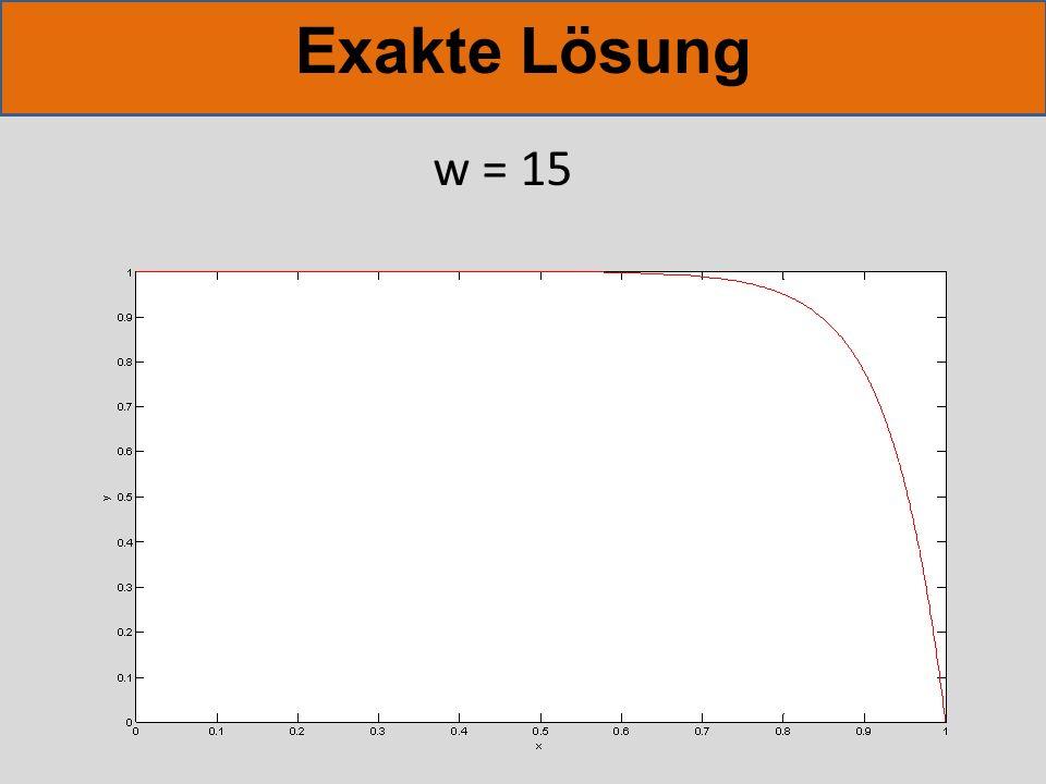Exakte Lösung w = 20