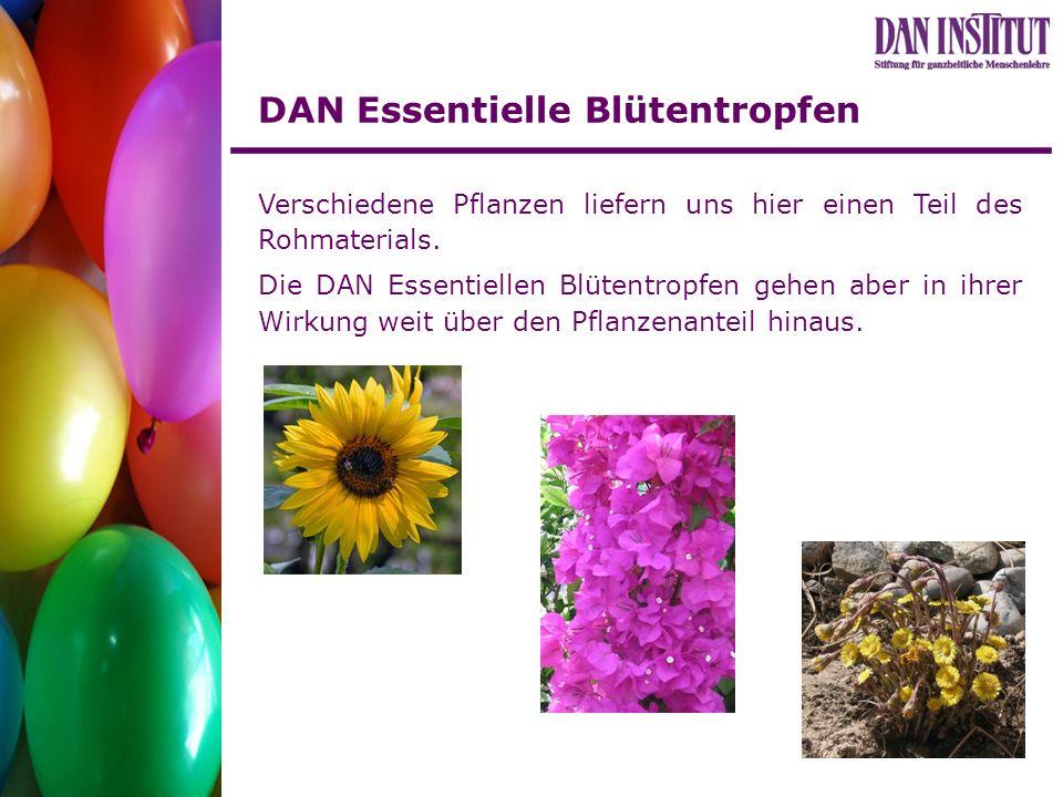 DAN Essentielle Blütentropfen Verschiedene Pflanzen liefern uns hier einen Teil des Rohmaterials. Die DAN Essentiellen Blütentropfen gehen aber in ihr
