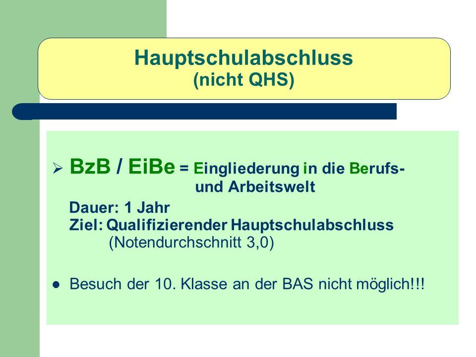 Hauptschulabschluss (nicht QHS) BzB / EiBe = Eingliederung in die Berufs- und Arbeitswelt Dauer: 1 Jahr Ziel: Qualifizierender Hauptschulabschluss (No