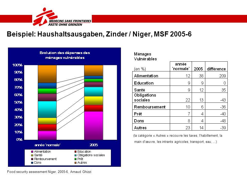 Beispiel: Haushaltsausgaben, Zinder / Niger, MSF 2005-6 Food security assessment Niger, 2005-6, Arnaud Ghizzi (la catégorie « Autres » recouvre les ta