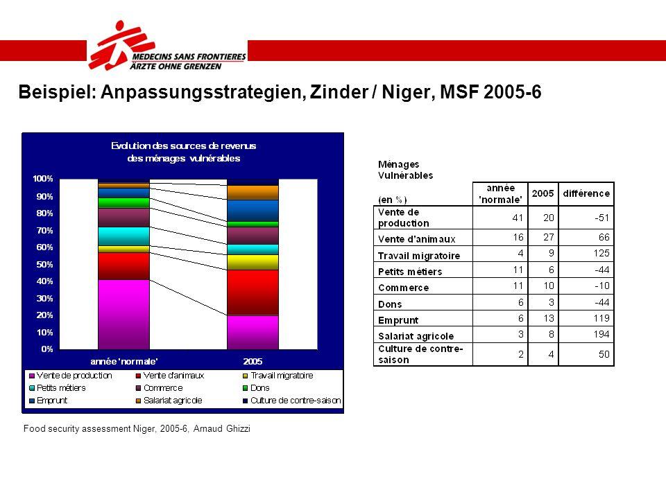 Beispiel: Anpassungsstrategien, Zinder / Niger, MSF 2005-6 Food security assessment Niger, 2005-6, Arnaud Ghizzi