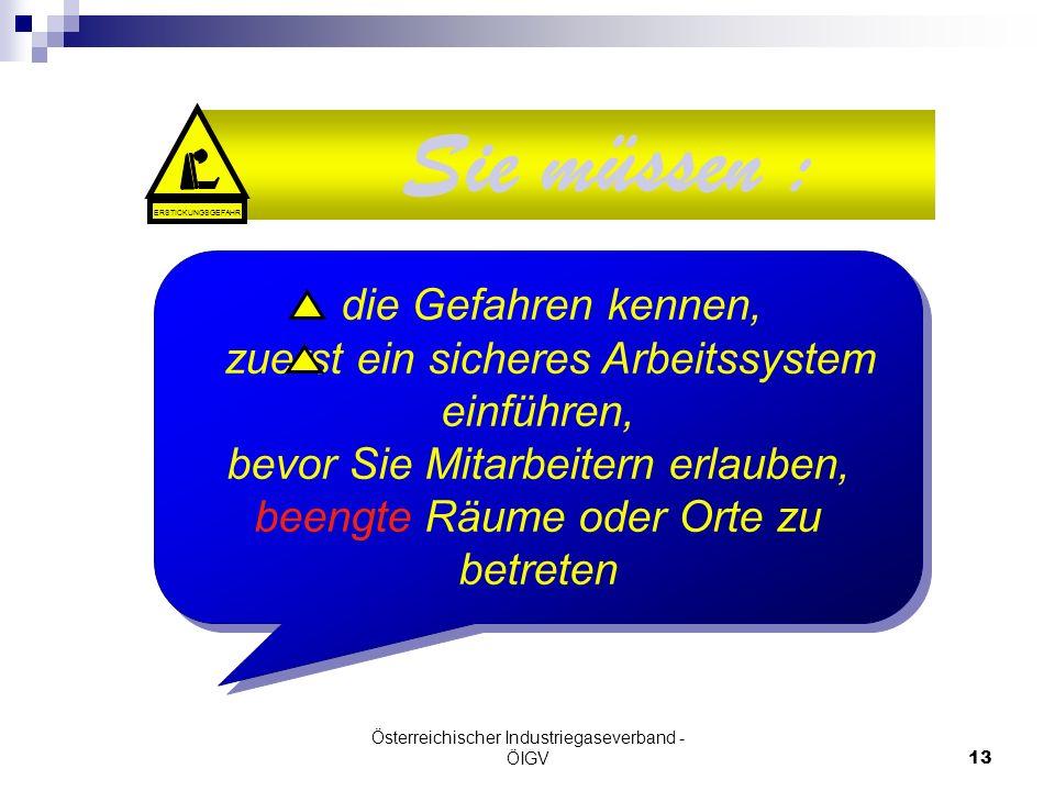 Österreichischer Industriegaseverband - ÖIGV13 Sie müssen : die Gefahren kennen, zuerst ein sicheres Arbeitssystem einführen, bevor Sie Mitarbeitern e