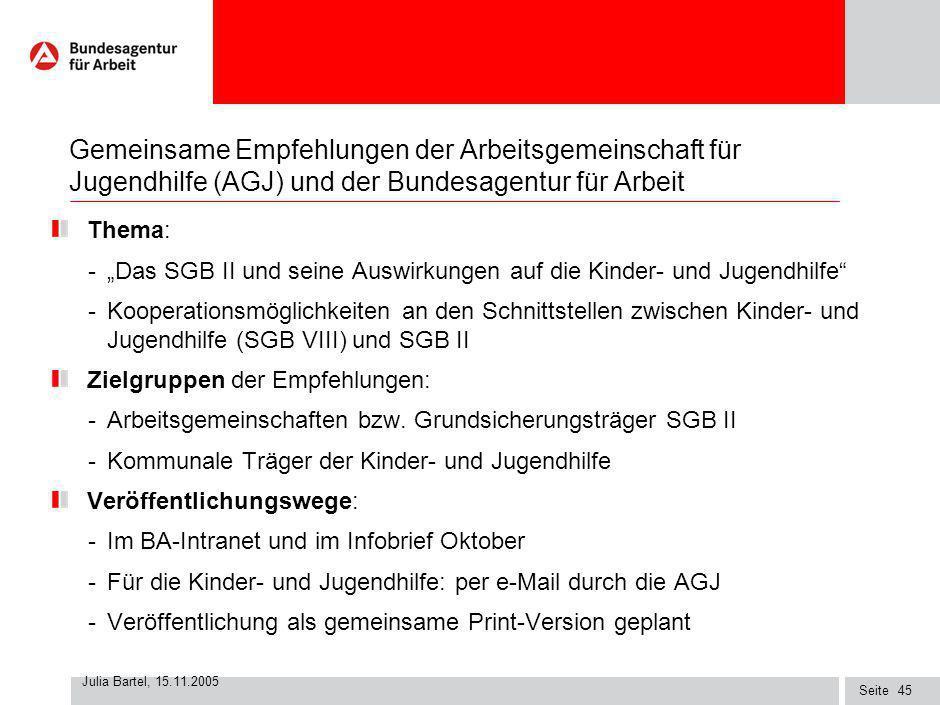 Seite Julia Bartel, 15.11.2005 44 Mögliche gemeinsame Kooperationsziele Entwicklung einer tragfähigen Berufsorientierung bei den Jugendlichen Förderun