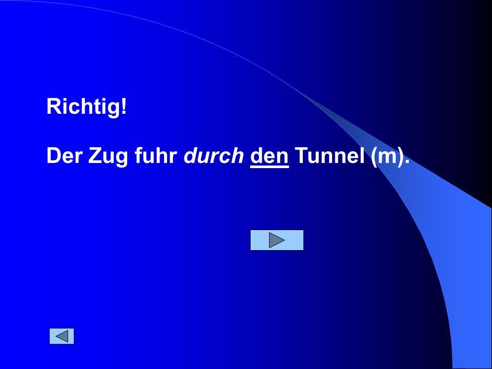Der Zug fuhr durch den Tunnel (m). Richtig!