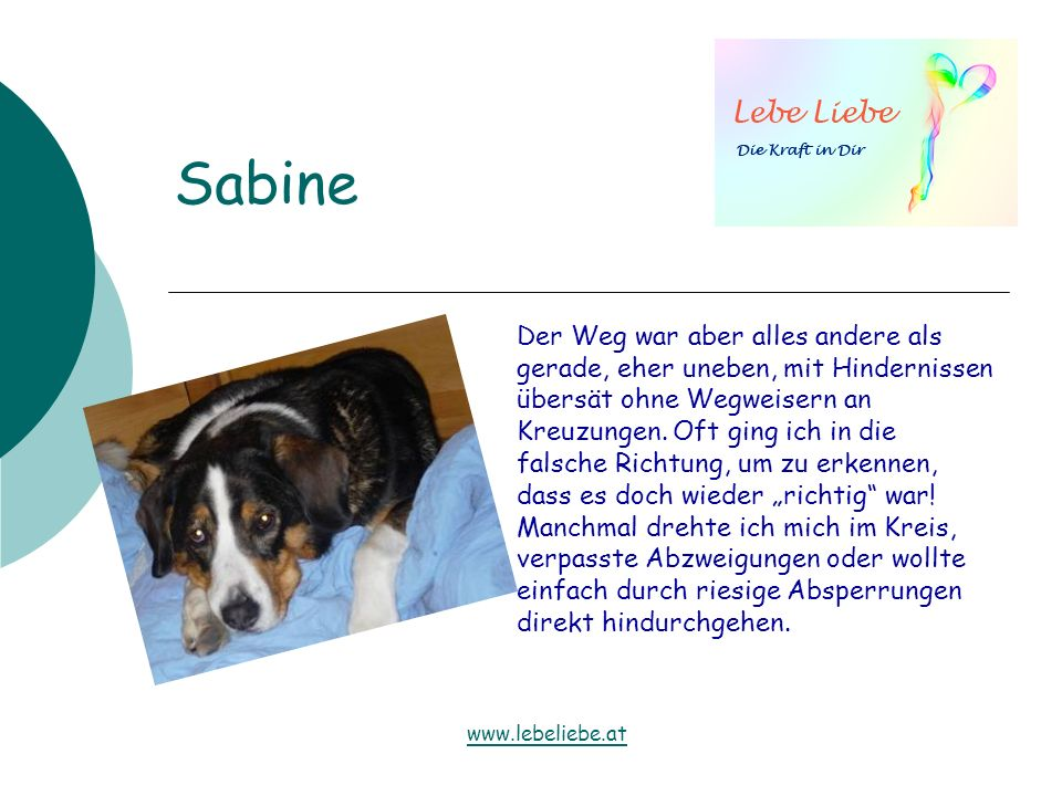 Sabine Der Weg war aber alles andere als gerade, eher uneben, mit Hindernissen übersät ohne Wegweisern an Kreuzungen. Oft ging ich in die falsche Rich