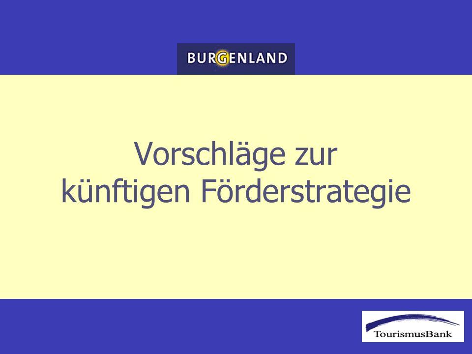 Vorschläge zur künftigen Förderstrategie