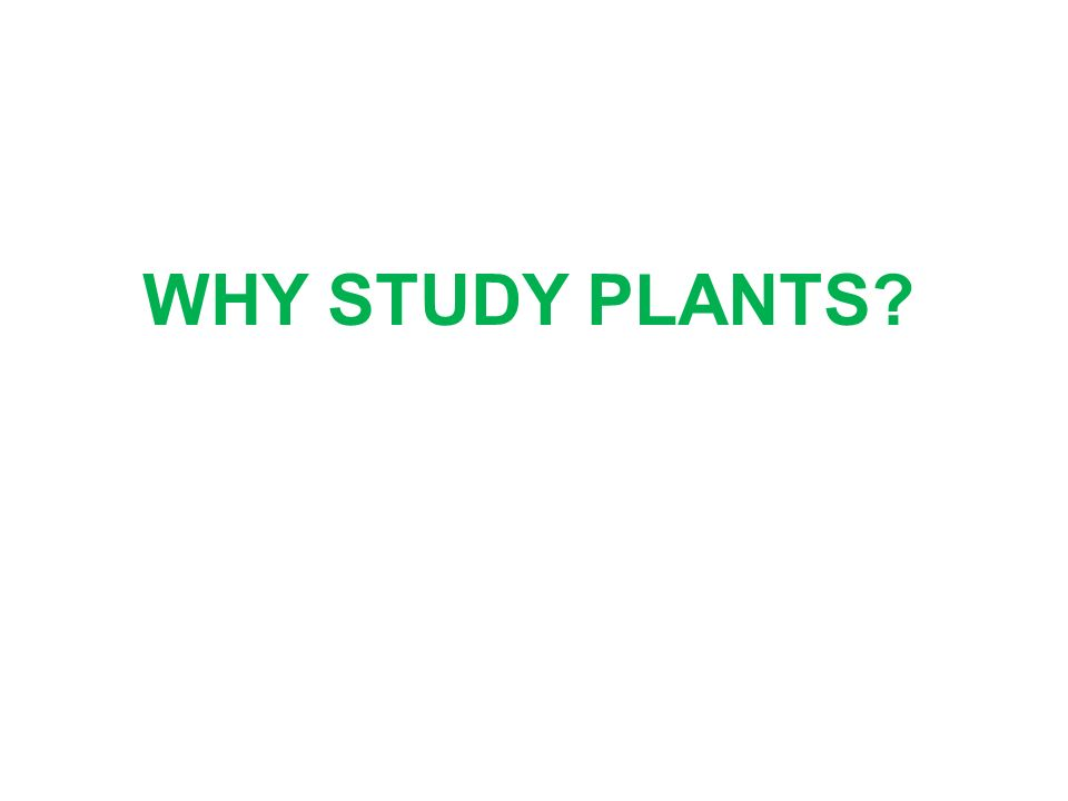 WHY STUDY PLANTS?