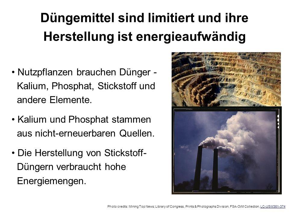 Düngemittel sind limitiert und ihre Herstellung ist energieaufwändig Nutzpflanzen brauchen Dünger - Kalium, Phosphat, Stickstoff und andere Elemente.