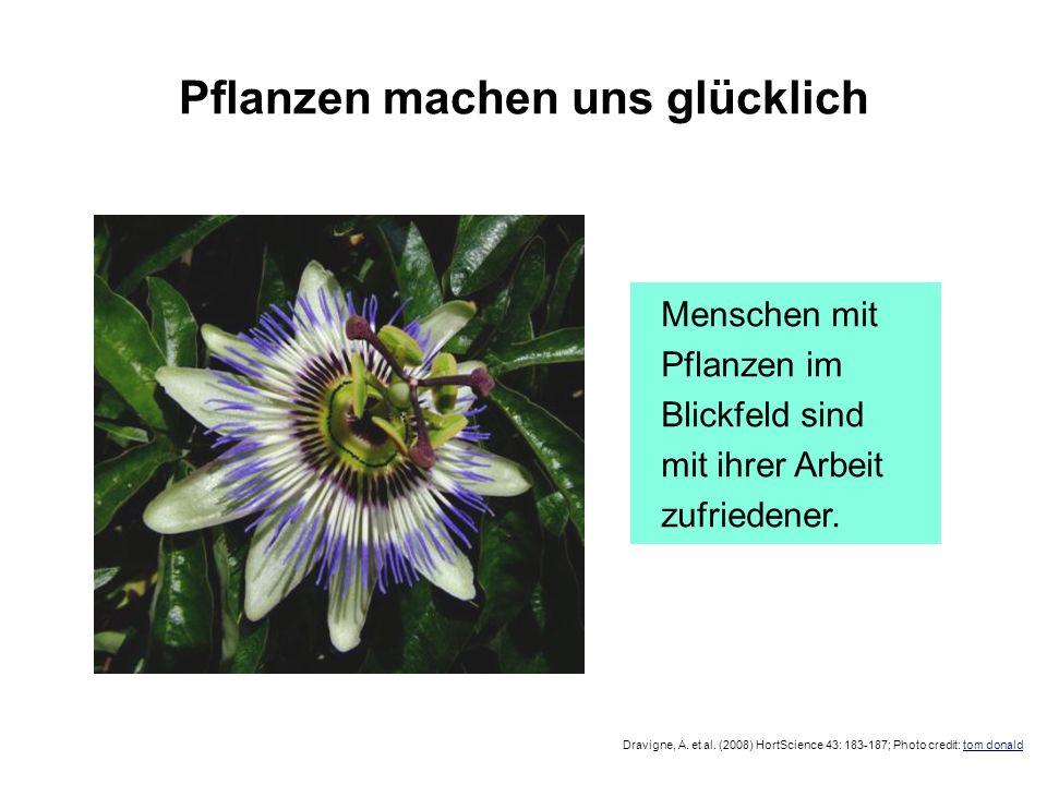 Pflanzen machen uns glücklich Dravigne, A. et al. (2008) HortScience 43: 183-187; Photo credit: tom donald Menschen mit Pflanzen im Blickfeld sind mit