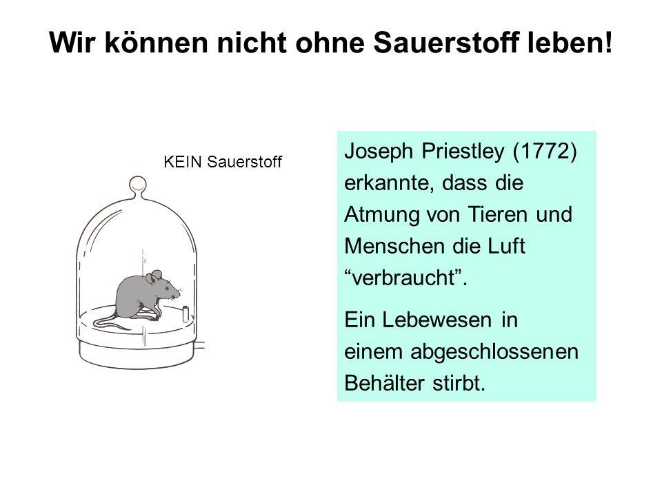 Joseph Priestley (1772) erkannte, dass die Atmung von Tieren und Menschen die Luft verbraucht. Ein Lebewesen in einem abgeschlossenen Behälter stirbt.