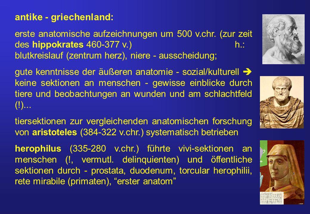 antike - griechenland: erste anatomische aufzeichnungen um 500 v.chr.