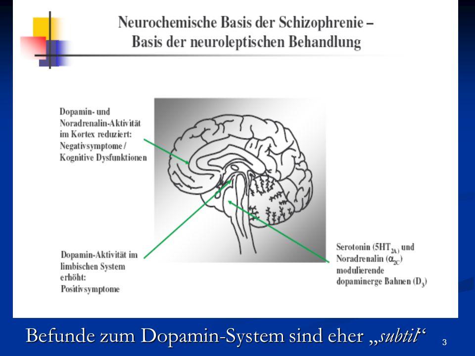 3 Befunde zum Dopamin-System sind eher subtil