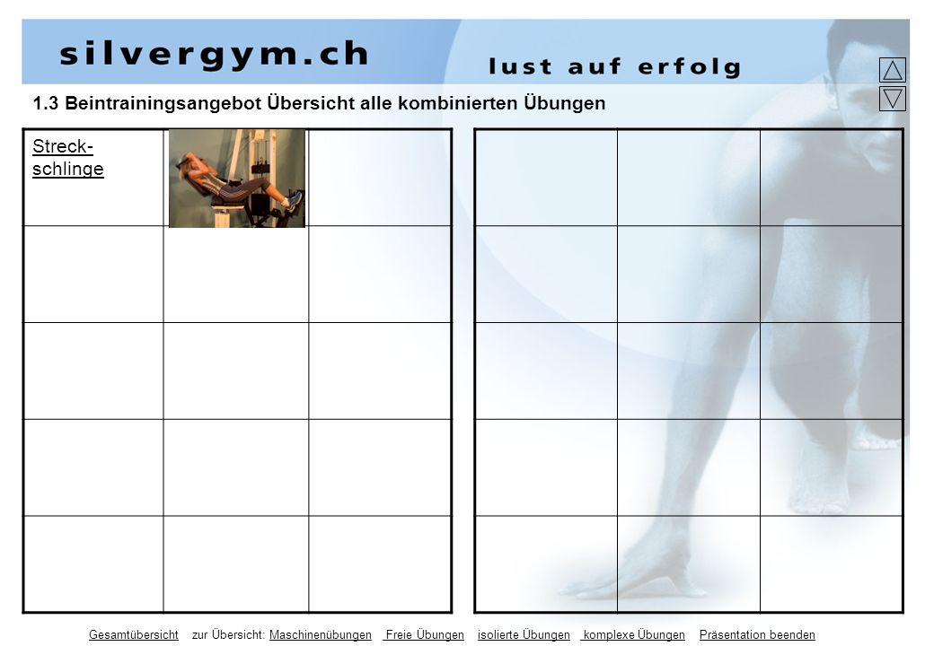 1.3 Beintrainingsangebot Übersicht alle kombinierten Übungen Streck- schlinge Gesamtübersicht zur Übersicht: Maschinenübungen Freie Übungen isolierte Übungen komplexe Übungen Präsentation beenden
